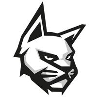 STICKERS POUR PROTEGES MAINS VERTIGO : TONNYCAT NASCAR BLANC/JAUNE