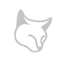 Filtre à air GREEN YFZ450-R ET YFZ